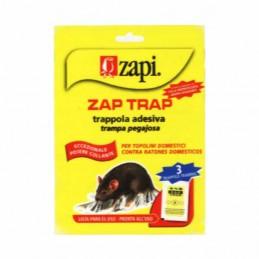 Colla Topi Tavolette Zap...